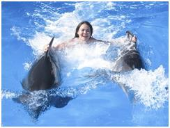 Девушка плывет с дельфинами