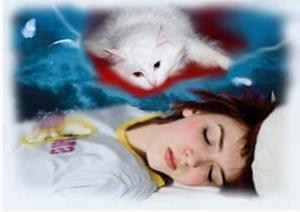 Девушке снится мертвая кошка