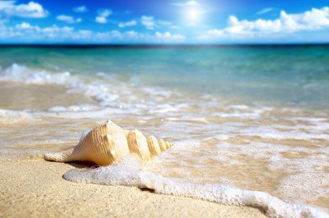 Видеть во сне мутное море