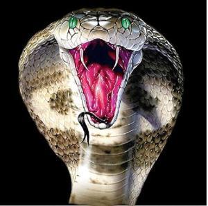 кобра скачать торрент