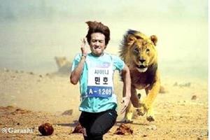 Убегать ото львов