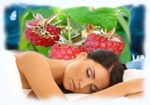 Собирать малину во сне