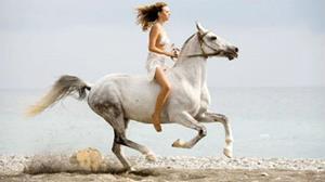 Скачки на лошади