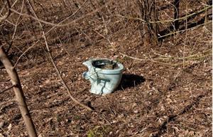 Унитаз в кустах