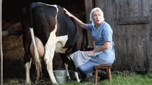 Доить корову во сне