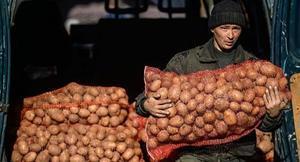 К чему снится мешок картошки в подарок 38
