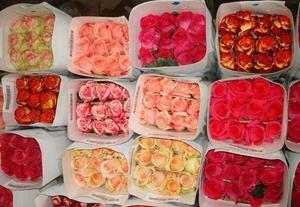 Розы в магазине