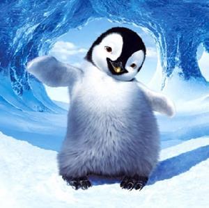 Детёныш пингвина