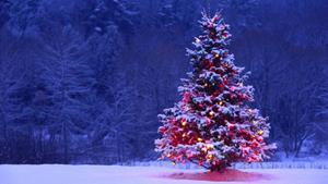 Новогоднее дерево
