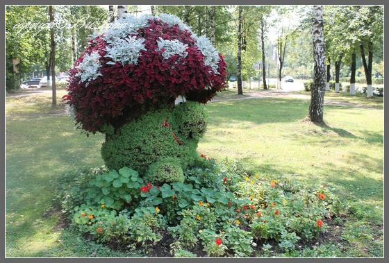 Исполинский гриб