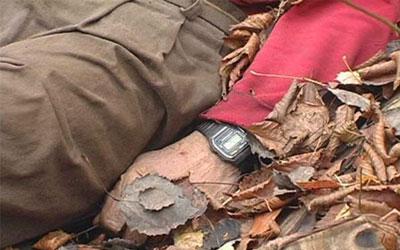 К чему снятся трупы после аварии фото