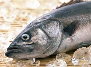 Большая рыбина