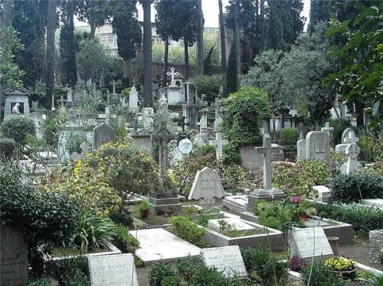 Цветы на могилках