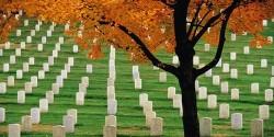 Утро на кладбище