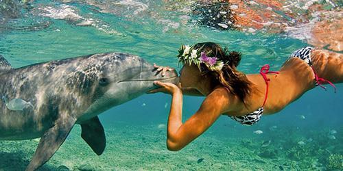Девушка целует дельфина