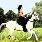 К чему снится ехать на лошади — значение сна