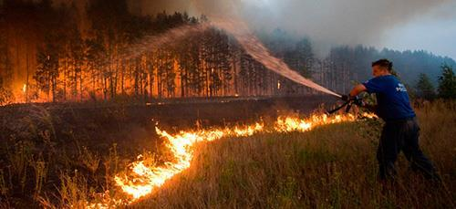 Мужчина тушит горящий лес