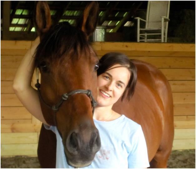 сонник толкование лошадь коричневая