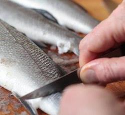 Парень разделывает рыбу