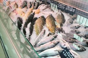 Большая рыба на витрине