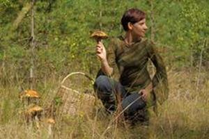 Женщина собирает грибы