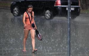 Промокшая под дождем