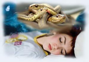 Снятся змеи