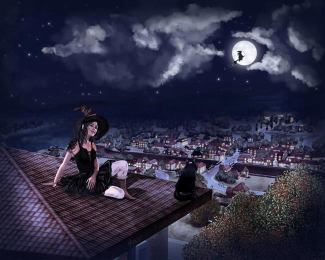 На крыше с кошкой