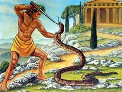 Убил змею