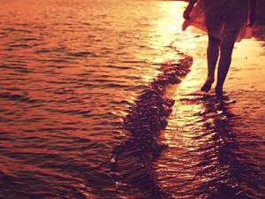 Гуляет по берегу