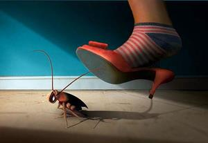 Давить таракана