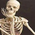 Что означает скелет по соннику