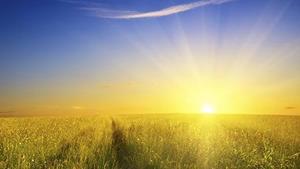 Солнце сияет