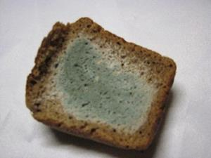 Плесневелый хлеб на столе дома