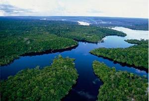 Полноводная река