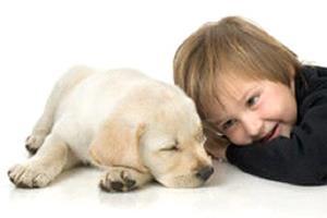 Ребёнок привёл щенка