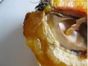 Червяки белого цвета в персике