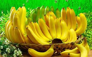 Бананы на траве