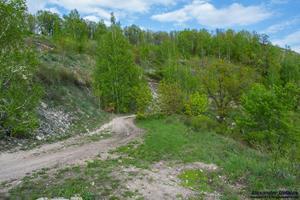 Дорога, сворачивающая в лес