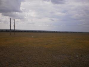 Нескончаемое поле
