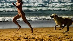 Убегать от собаки
