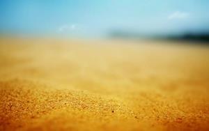 Жёлтый песок