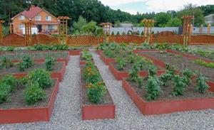 Изгородь около огорода
