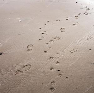 Мокрый песок